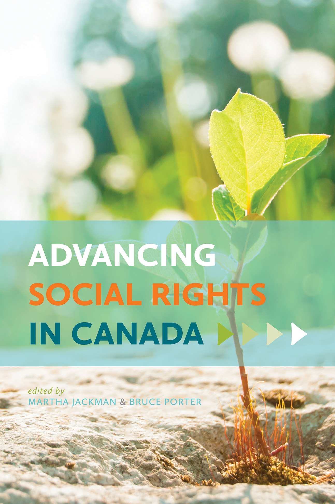 Advancing Social Rights in Canada